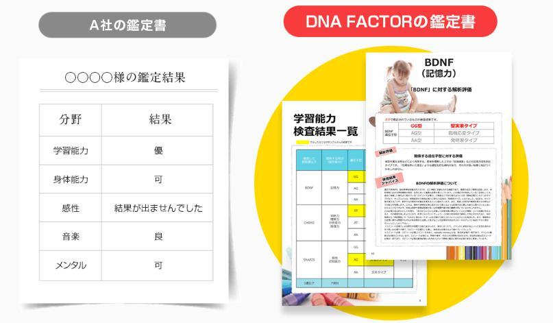 遺伝子検査の鑑定結果